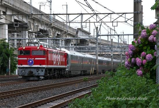 DSC_7574s.jpg